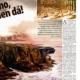 NOVY CAS MAGAZINE. Nº 9. (Eslovaquia). (Sep_2013).