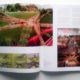 "NEW LANDSCAPE INTERNATIONAL. Nº 1. (China). ""Miraflores-Barranco Pedestrian Bridge"". pp 58-65. (Feb_2015)."